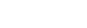 SB Engine ICT Consulting logo